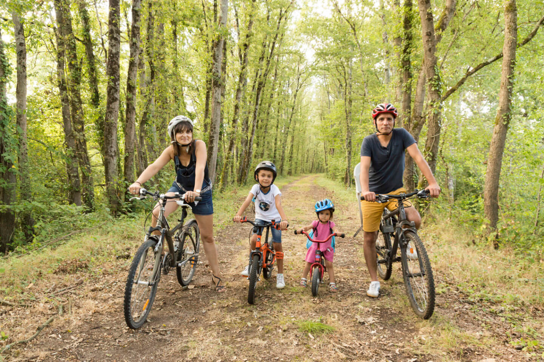 La route vélo scandibérique passe par Lussac-les-Chateaux